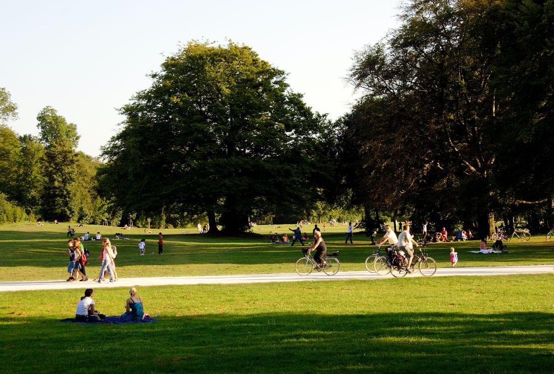 Mähroboter Brandenburg an der Havel